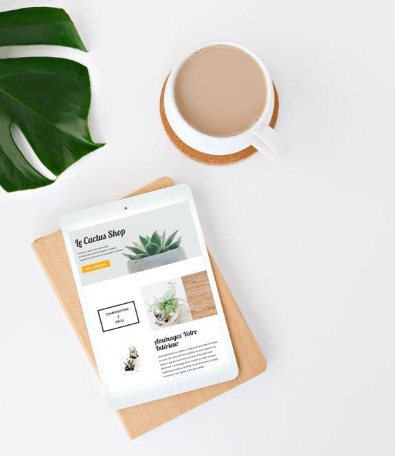 Site WordPress - modèle simplicité - thème cactus -